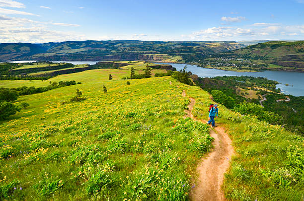 Hiking the Columbia Gorge stock photo