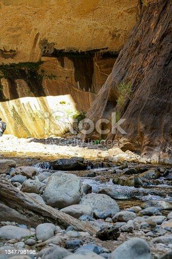 istock Hiking the Narrows in Zion National Park in Springdale, Utah, USA 1347798198