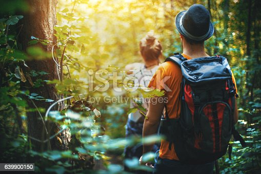 istock Hiking through a forest. 639900150