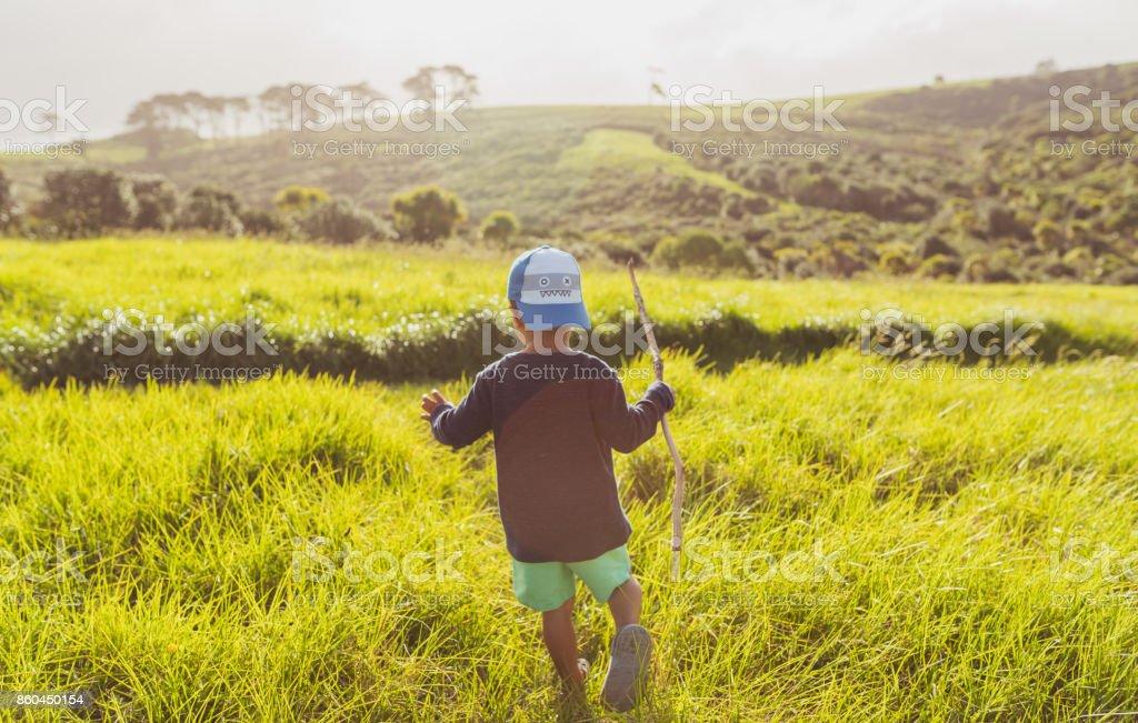 Hiking through Grassy Pastures. stock photo