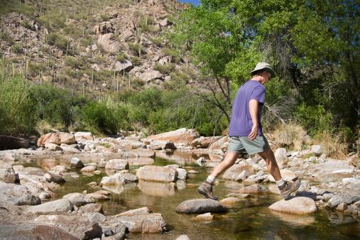 Hiking Through Hot Desert Forest
