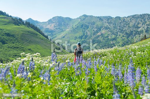 This is a view of a hiking girl during our recent decent through the Albion Basin above the Alta Ski Resort in Little Cottonwood Canyon, Utah.  We were surrounded in wildflowers including these purple and white ones visible in the picture that were waist high.  The wet spring and summer left the mountains covered in a lush green.  Special spot.