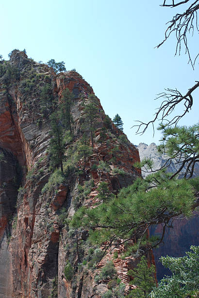 Hiking to Angel's landing Zion National Park stock photo