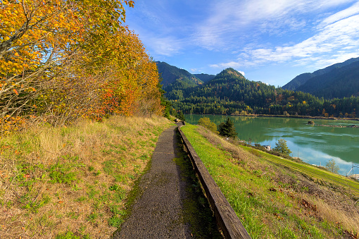 Hiking Trail Along Columbia River Stock Photo - Download Image Now