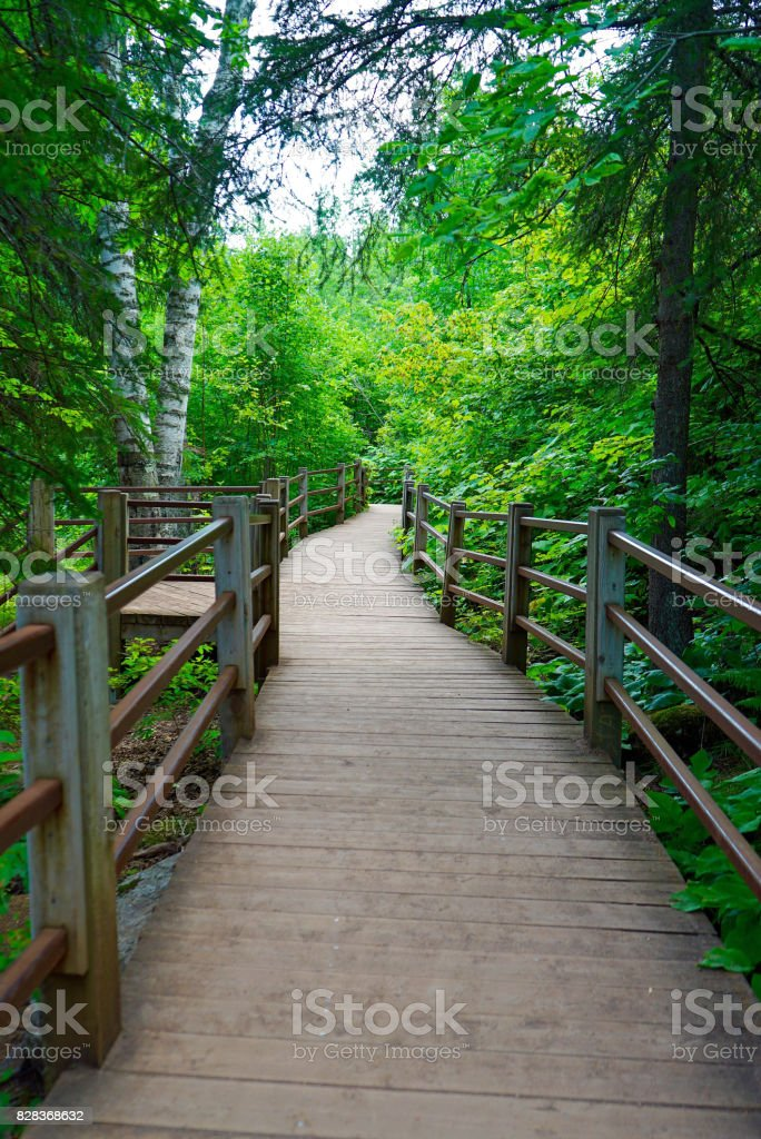 Hiking Trail along Gooseberry River stock photo