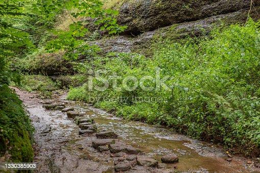 istock Hiking trail and stream in the Drachenschlucht near Eisenach 1330385903
