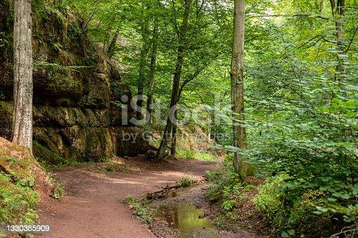 istock Hiking trail and stream in the Drachenschlucht near Eisenach 1330385909