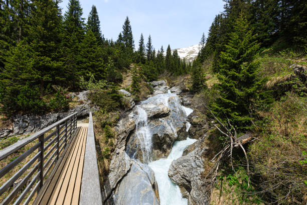 Wanderweg, Brücke über einen Gebirgsbach – Foto