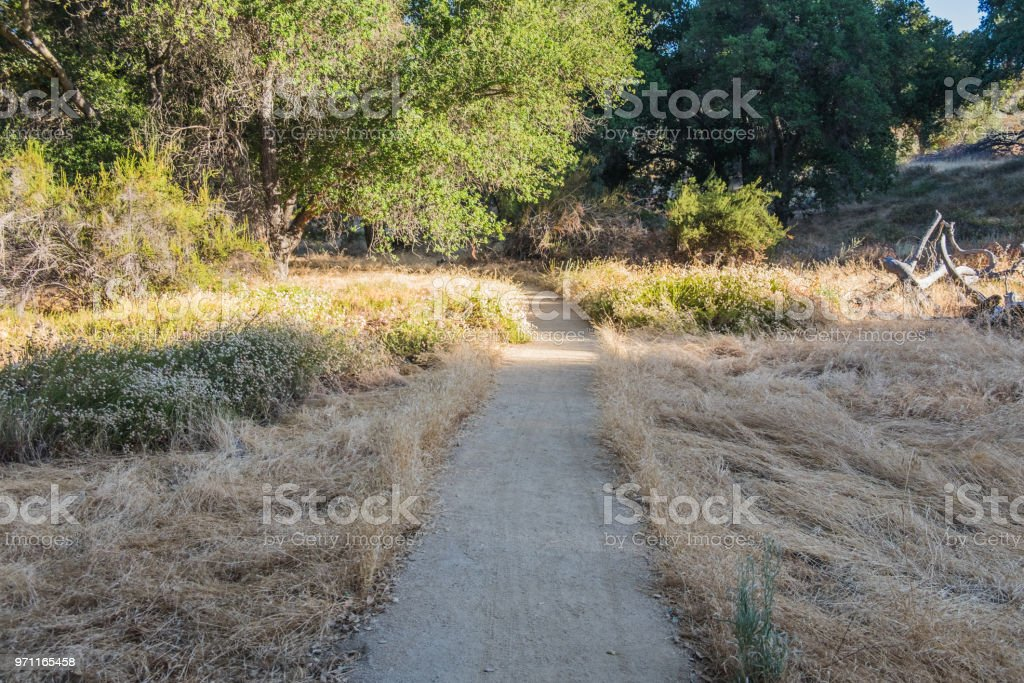 Hiking Trail - dirt path stock photo