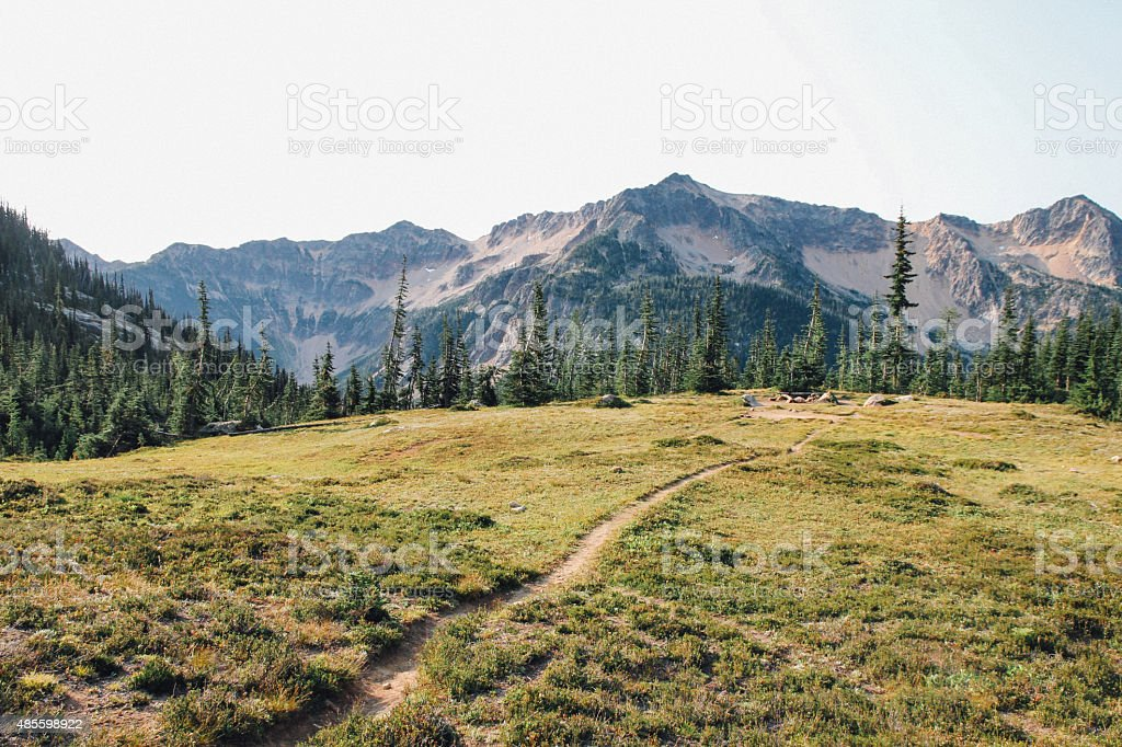 Hiking trail in a mountain meadow stock photo