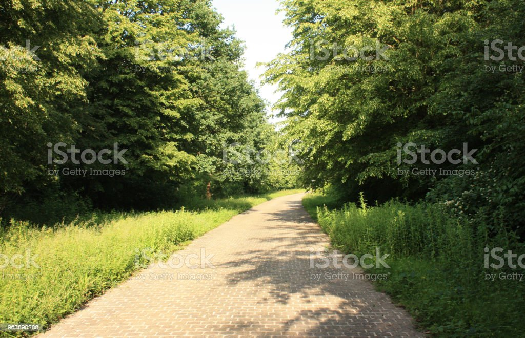 Hiking trail in a public park in the Ile-de-France - Royalty-free Footpath Stock Photo