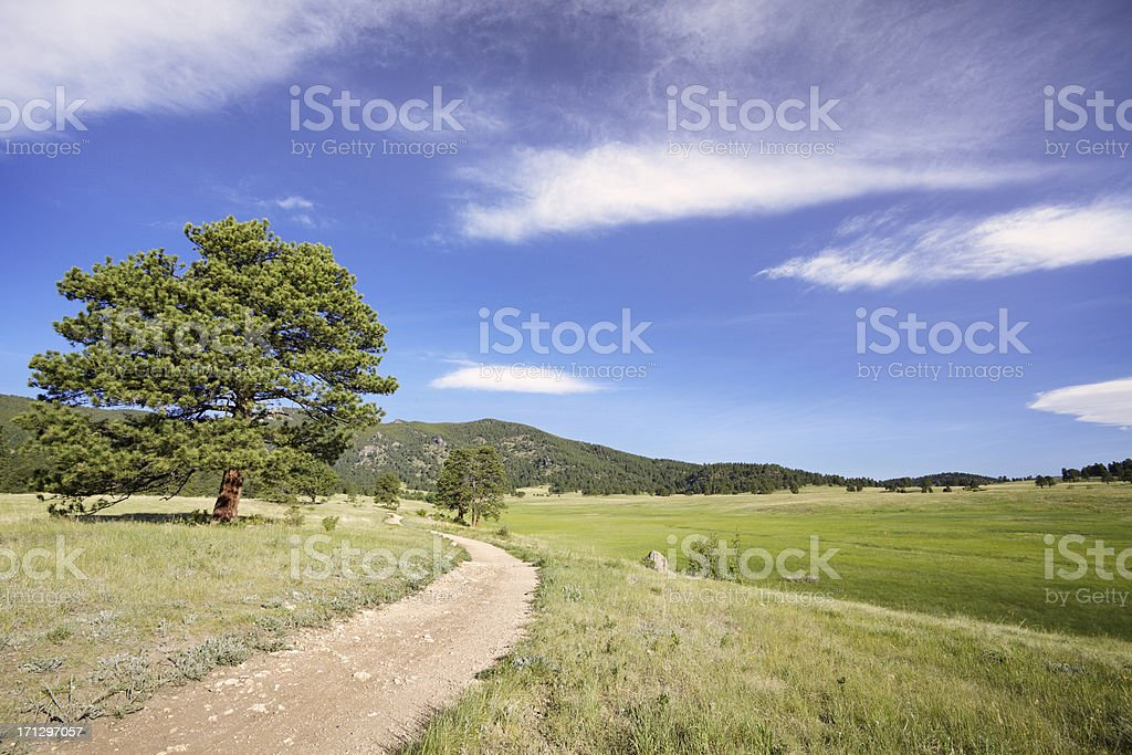 Hiking Trail In Colorado royalty-free stock photo
