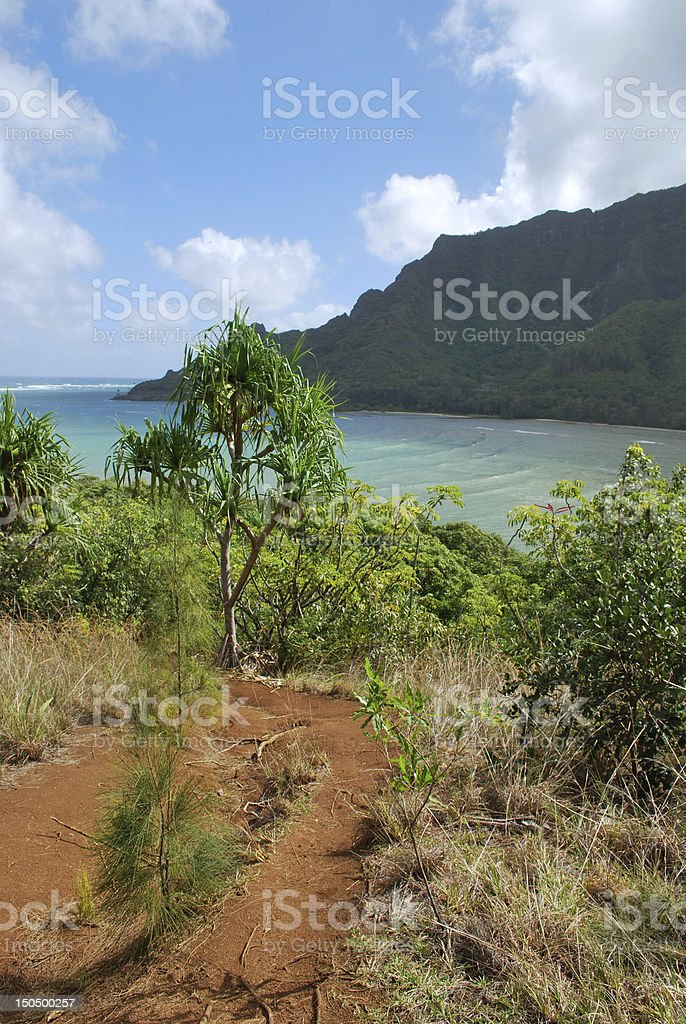 Hiking trail in Oahu, Hawaii stock photo