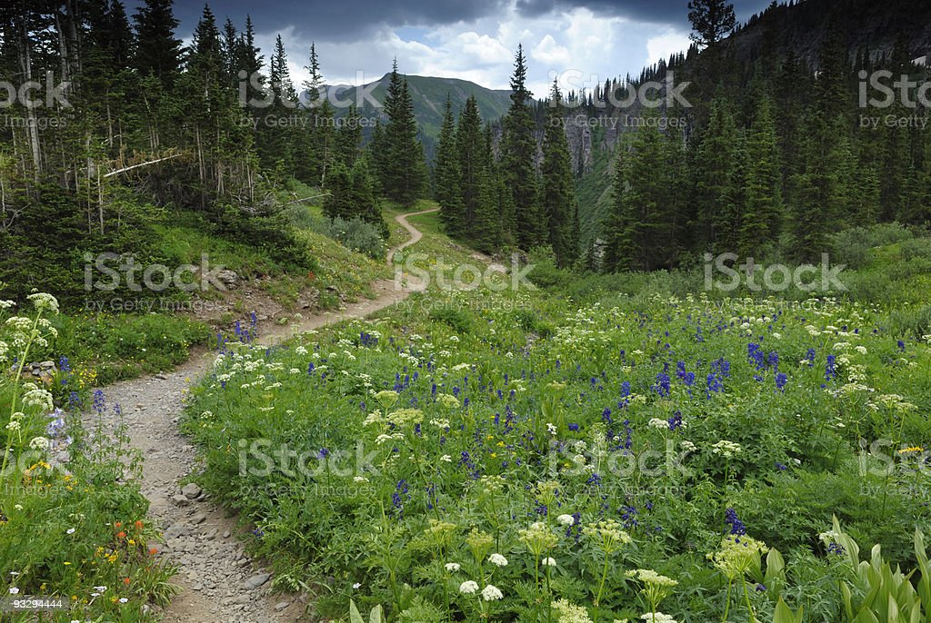 Hiking trail in Rocky Mountains, Colorado stock photo