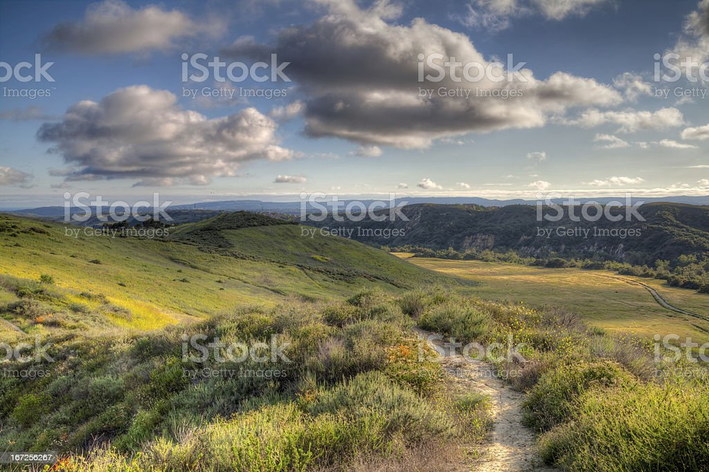 Hiking trail in the wilderness stock photo