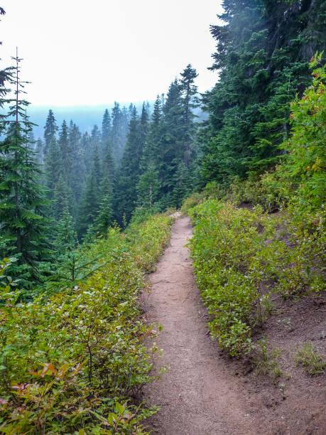 Hiking trail in Washington state to Lake Valhalla stock photo