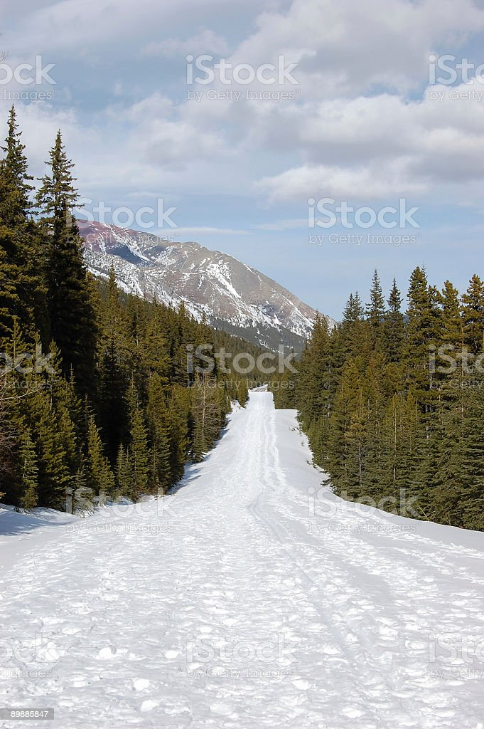 Hiking trail in Waterton Lakes National Park royalty-free stock photo