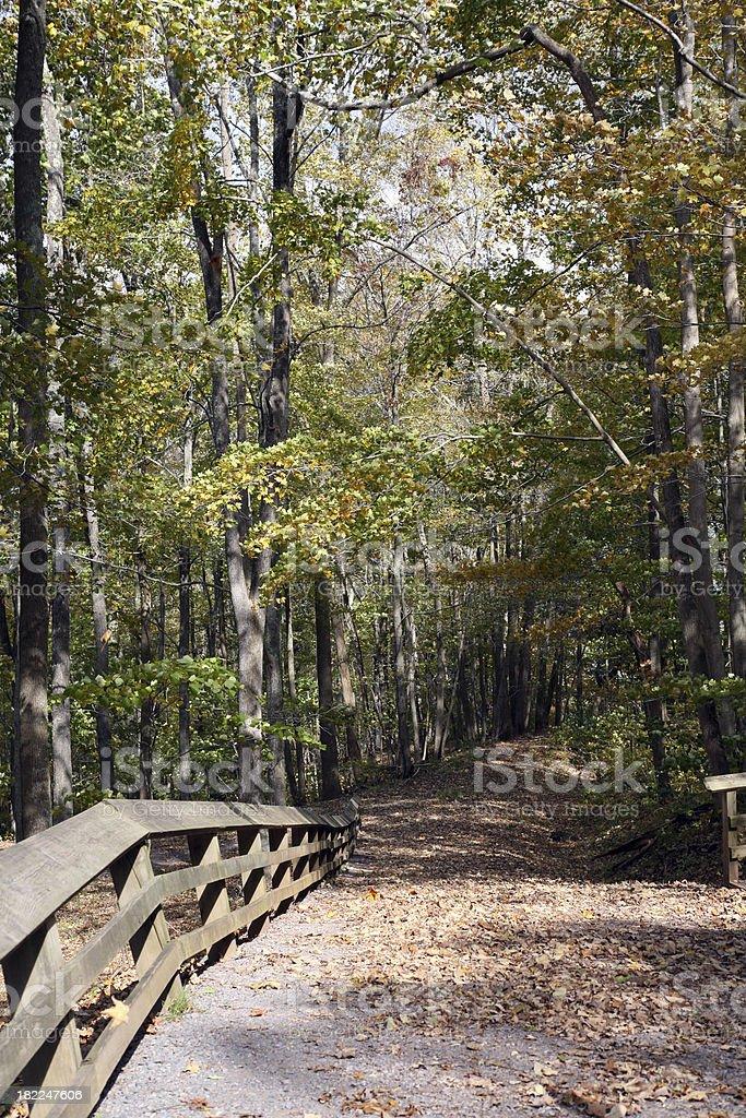 Hiking Trail Into The Blue Ridge Mountains royalty-free stock photo