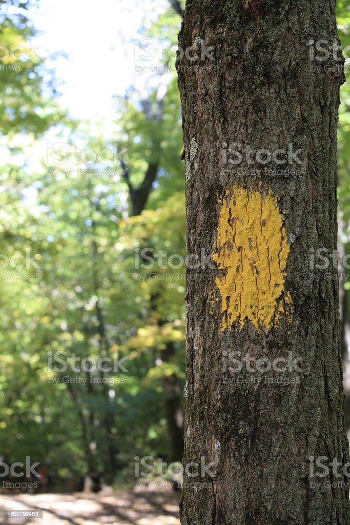 Hiking Trail Marker stock photo