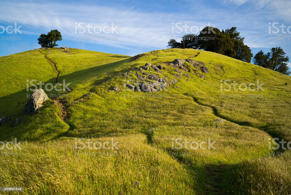 Senda De Excursionismo Monte Tamalpais - Fotografía de stock y más ... 9a040438c94