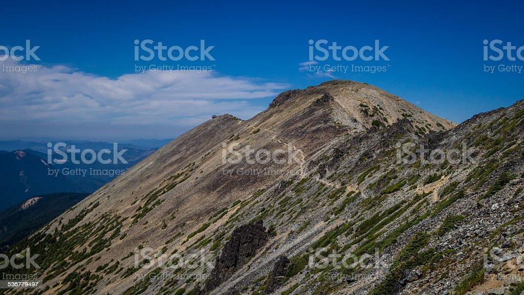 Hiking Trail Near Mt. Rainier stock photo