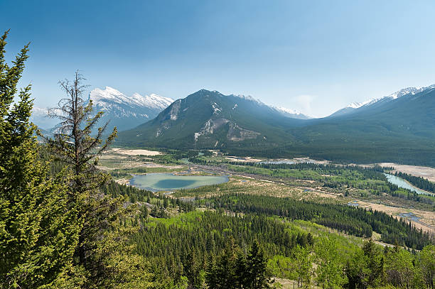 hiking trail of Cory Pass and Bow Valley stock photo