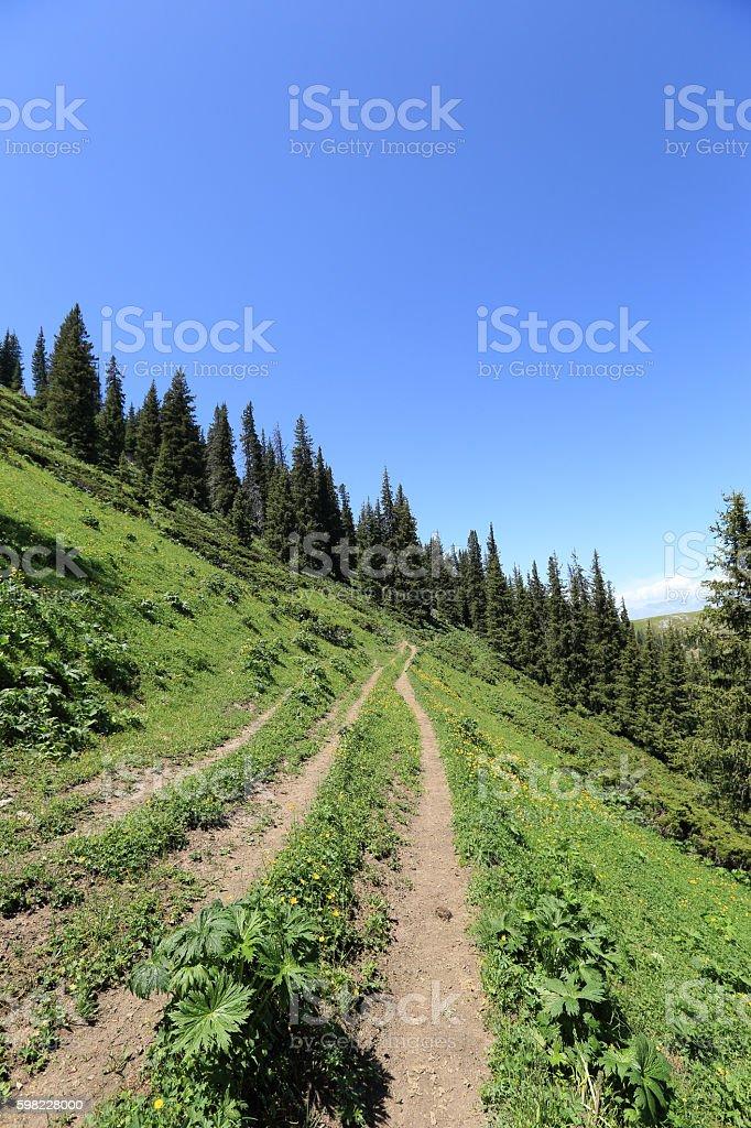 hiking trail on mountain peak foto royalty-free