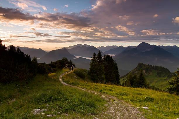 hiking trail - bayerischer wald bildbanksfoton och bilder
