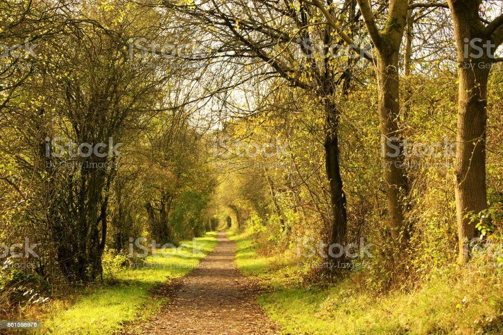 Wanderweg. – Foto