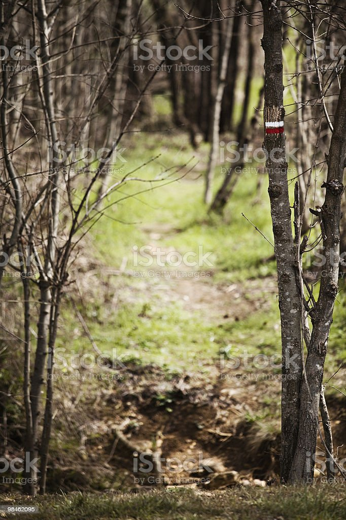 Hiking trail sign royalty-free stock photo
