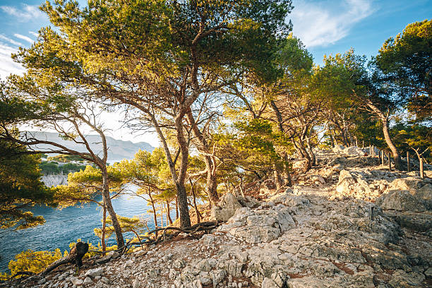Hiking Trails Among Calanques On The French Riviera. stock photo