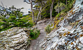 Hiking trails around Tierra Del Fuego national park in Argentina allow travelers to explore the beautiful landscape.