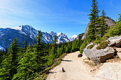 istock Hiking Views around Lake Louise, Lakeview trail, Plain of six glaciers, Lake Agnes, Mirror Lake,  and Little and Big Beehive, Banff National Park, Canada, Alberta 927756174
