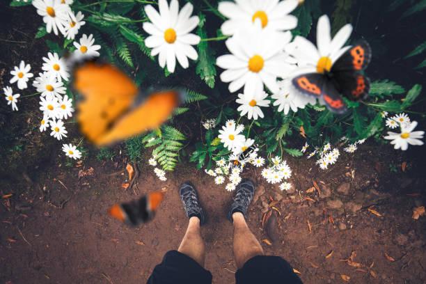 Hiking with butterflies picture id1206854777?b=1&k=6&m=1206854777&s=612x612&w=0&h=di g3t99apzpjdvcw3nkqzzwzd76qmqsil8ztpnu2hm=