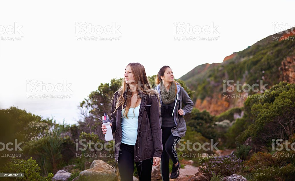 Hiking with my best friend stock photo