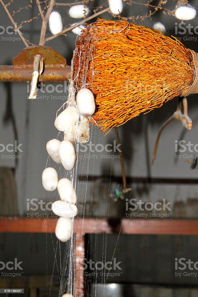 Hilar capullos de seda stock photo