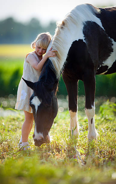 Сhild hugging a horse in a field in springtime http://s019.radikal.ru/i600/1204/bb/5d41035f432c.jpg paint horse stock pictures, royalty-free photos & images