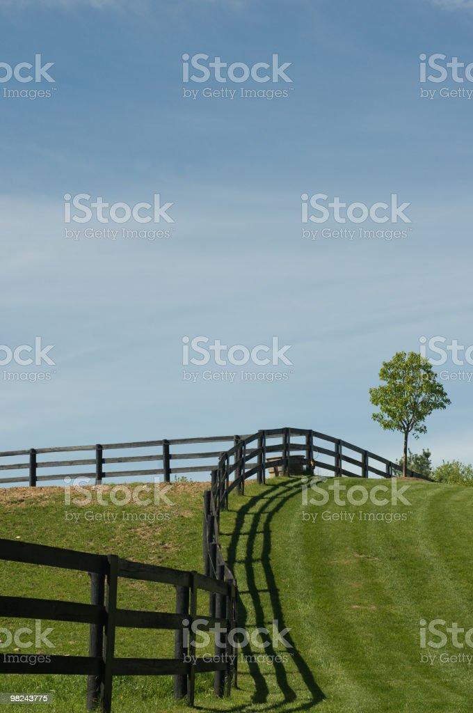 힐 및 Blue Sky royalty-free 스톡 사진