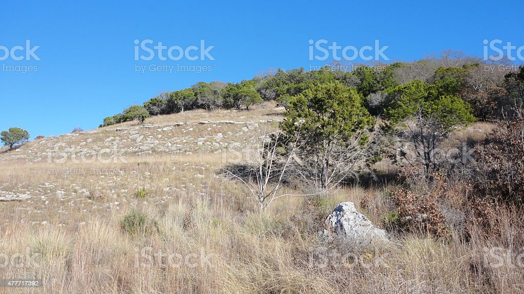hill country stock photo