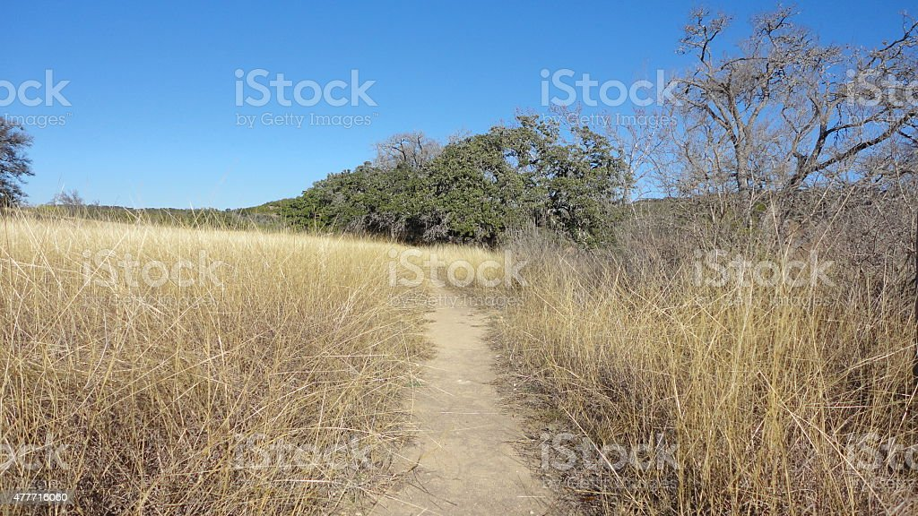 hill country trail stock photo