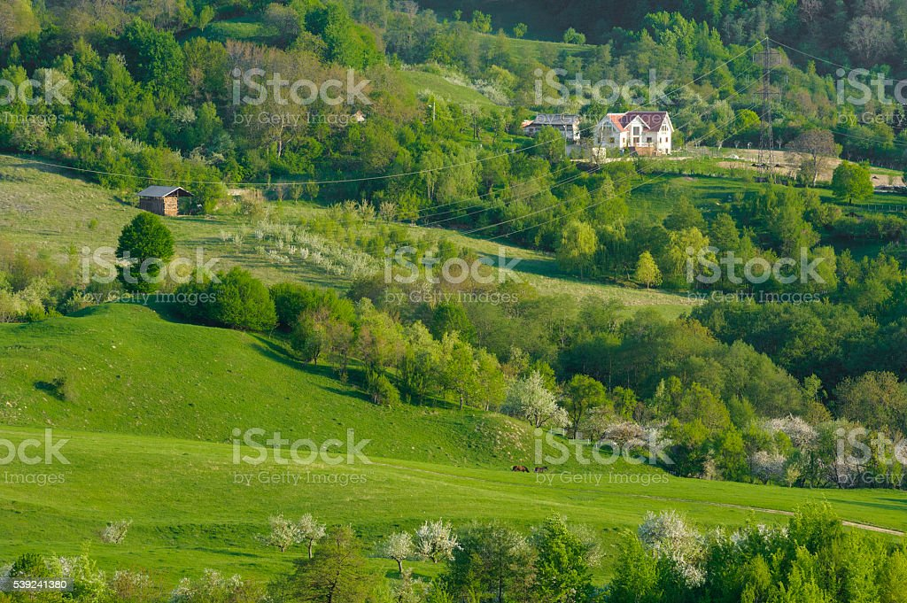 Hill in green royalty-free stock photo