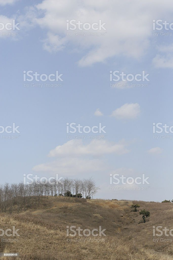 hill in winter under blue sky royalty-free stock photo