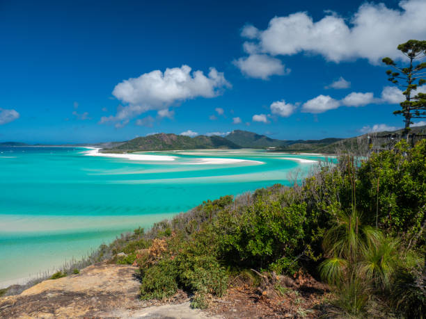 hill inlet whitsunday island - great barrier reef marine park stock pictures, royalty-free photos & images