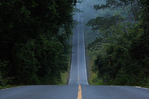 hill road a narrow hill road inside the forest steep stock pictures, royalty-free photos & images