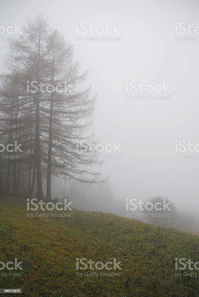 Hill pendenza in nebbia foto stock royalty-free