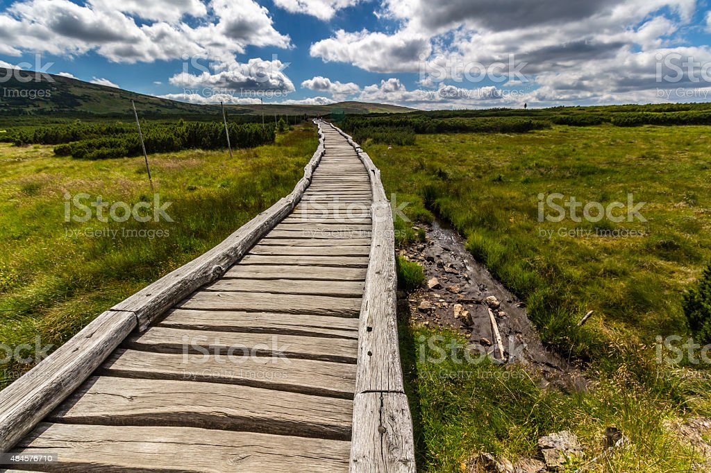 Hill Snezka and wood path in the national park Krkonose stock photo
