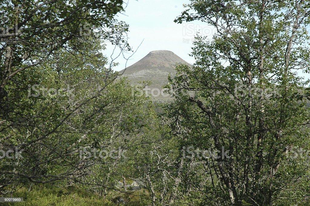 Hill Städjan, Idre, Sweden stock photo