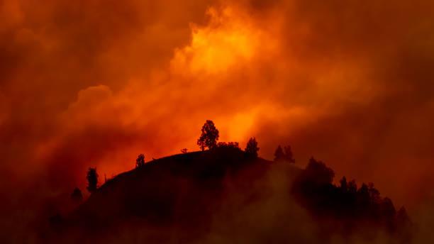 heuvel met bomen gaan branden in rood, oranje wildvuur - bosbrand stockfoto's en -beelden