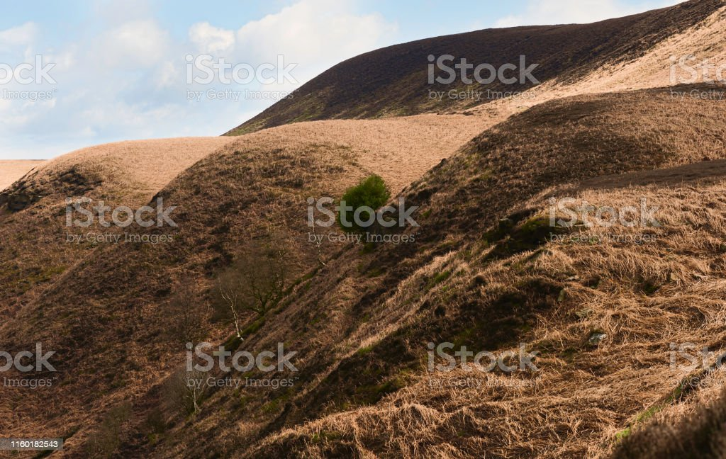 Goathland, Yorkshire, UK. View of hills and valley with trees and...