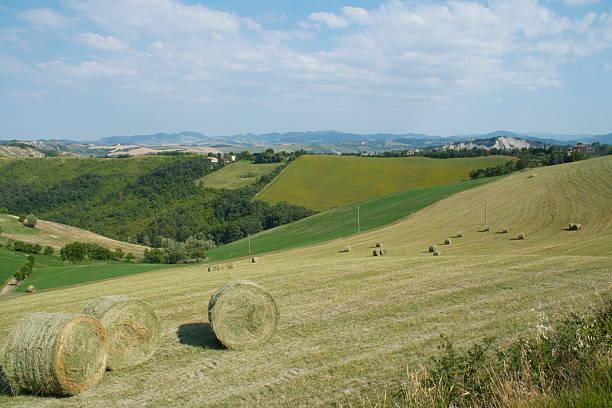 hills in bologna (italien) - jake*s stock-fotos und bilder